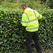 Exeter Garden Maintenance