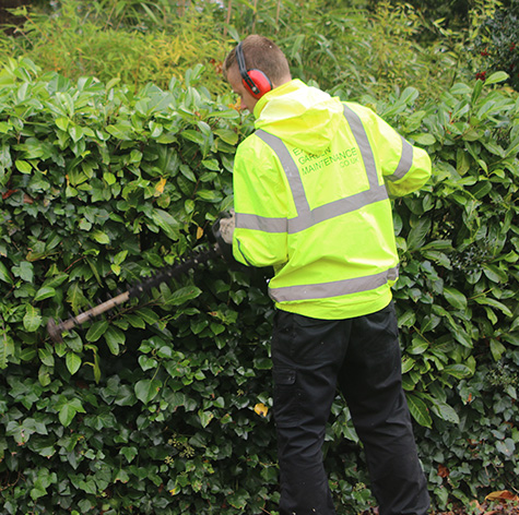 Gardening Services Exeter